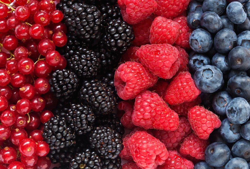 Tutorado-de-Berries